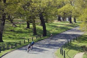 Richmond Park Infocrank Power Meter for Cycling
